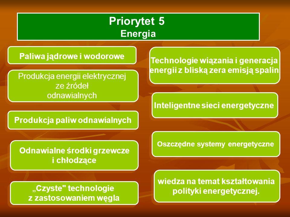 Priorytet 5 Energia Paliwa jądrowe i wodorowe Produkcja energii elektrycznej ze źródeł odnawialnych Produkcja energii elektrycznej ze źródeł odnawialnych Technologie wiązania i generacja energii z bliską zera emisją spalin Technologie wiązania i generacja energii z bliską zera emisją spalin Produkcja paliw odnawialnych Odnawialne środki grzewcze i chłodzące Odnawialne środki grzewcze i chłodzące Oszczędne systemy energetyczne Inteligentne sieci energetyczne Czyste technologie z zastosowaniem węgla Czyste technologie z zastosowaniem węgla wiedza na temat kształtowania polityki energetycznej.