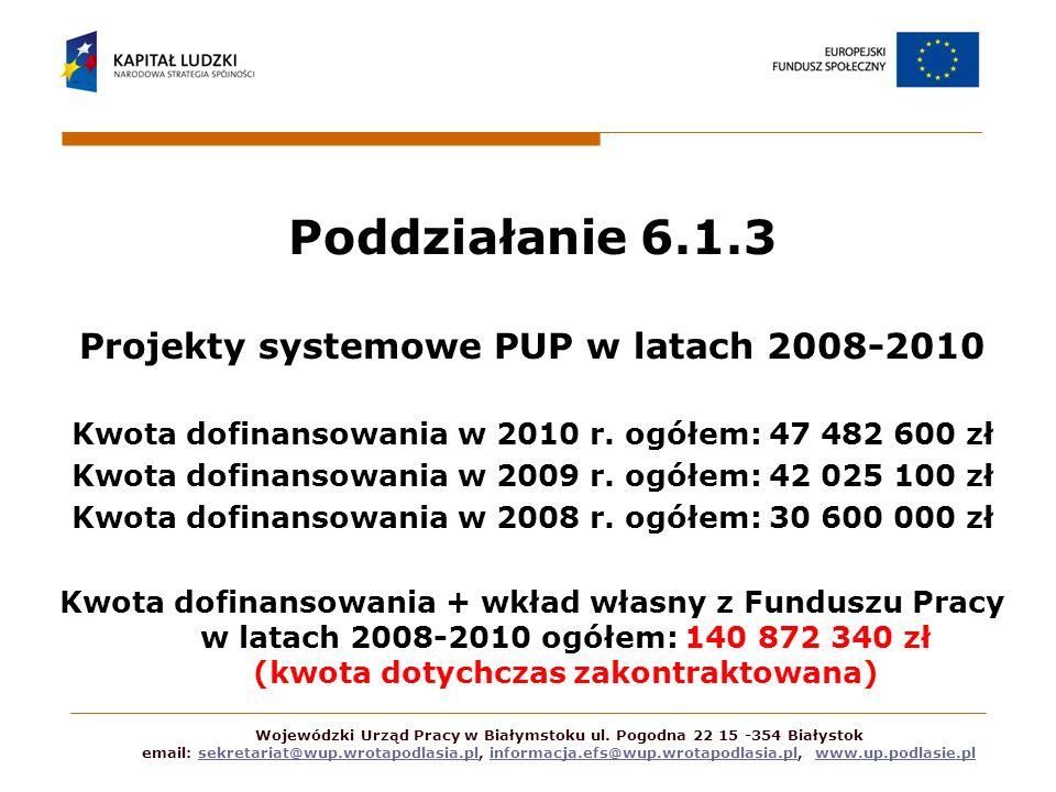 Poddziałanie 6.1.3 Projekty systemowe PUP w latach 2008-2010 Kwota dofinansowania w 2010 r. ogółem: 47 482 600 zł Kwota dofinansowania w 2009 r. ogółe
