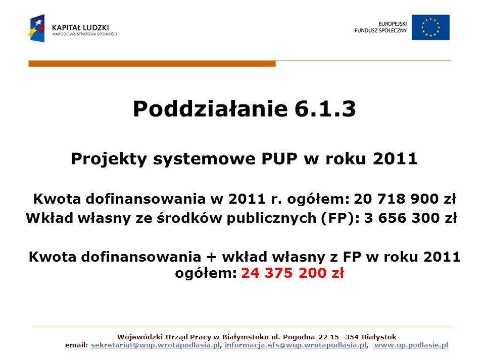 Poddziałanie 6.1.3 Projekty systemowe PUP w roku 2011 Kwota dofinansowania w 2011 r. ogółem: 20 718 900 zł Wkład własny ze środków publicznych (FP): 3