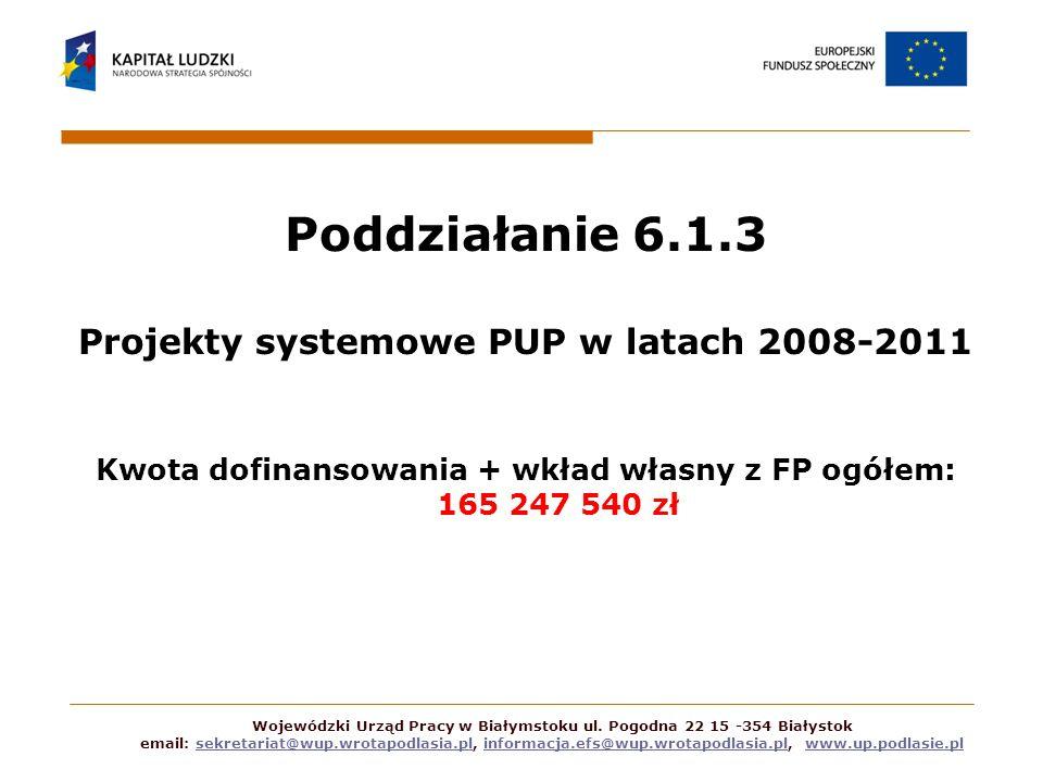 Poddziałanie 6.1.3 Projekty systemowe PUP w latach 2008-2011 Kwota dofinansowania + wkład własny z FP ogółem: 165 247 540 zł Wojewódzki Urząd Pracy w