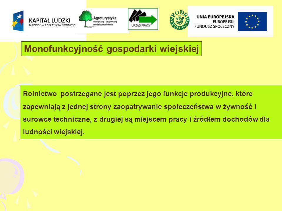 8% ludności związanej z działalnością rolniczą czerpie swe dochody wyłącznie z rolnictwa * dla 27,4% ludności wiejskiej działalność rolnicza stanowi podstawowe źródło utrzymania * 47,5% gospodarstw rolnych w Polsce produkuje na rynek pozostałe ograniczyły produkcję tylko do samozaopatrzenia lub w ogóle zaniechały jej - 52,5% * dochody z rolnictwa są zbyt małe, aby pozwoliły generować środki na dalszy rozwój