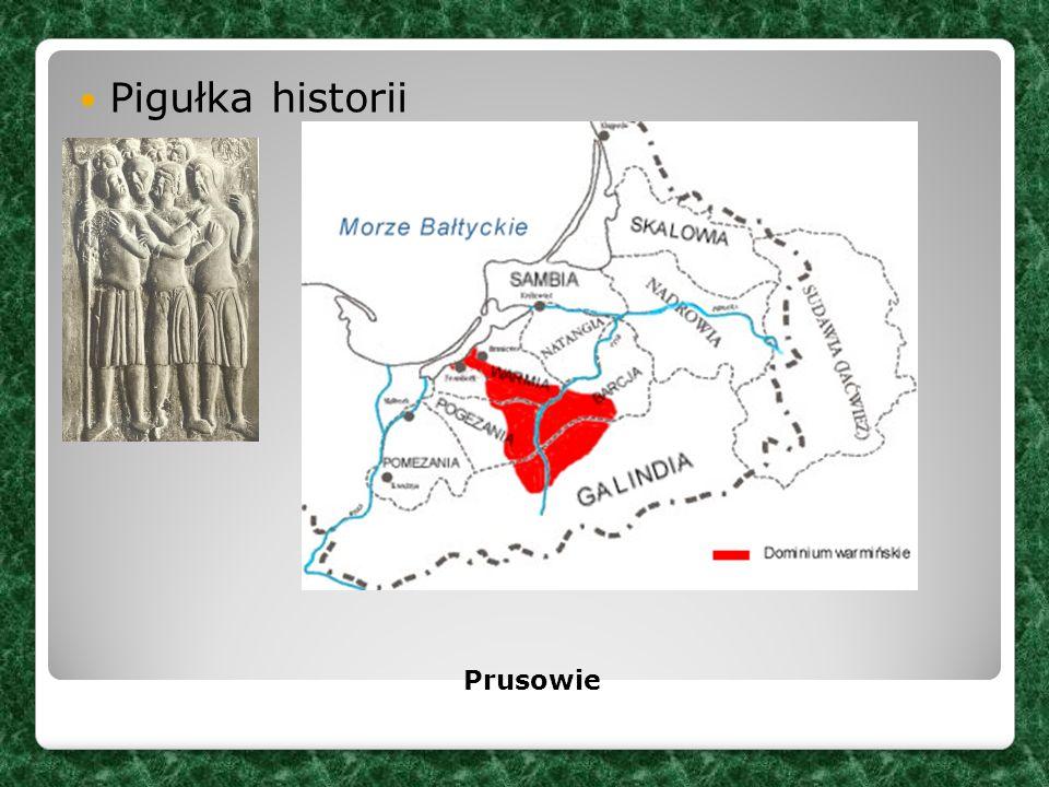Pigułka historii Prusowie
