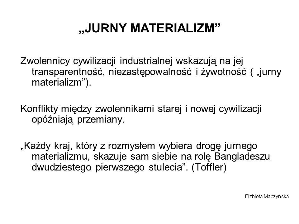 JURNY MATERIALIZM Zwolennicy cywilizacji industrialnej wskazują na jej transparentność, niezastępowalność i żywotność ( jurny materializm). Konflikty