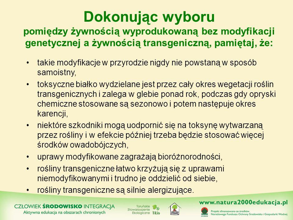 takie modyfikacje w przyrodzie nigdy nie powstaną w sposób samoistny, toksyczne białko wydzielane jest przez cały okres wegetacji roślin transgeniczny
