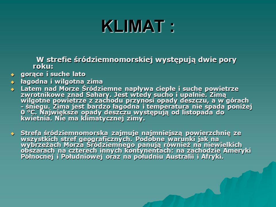 KLIMAT : W strefie śródziemnomorskiej występują dwie pory roku: W strefie śródziemnomorskiej występują dwie pory roku: gorące i suche lato gorące i su