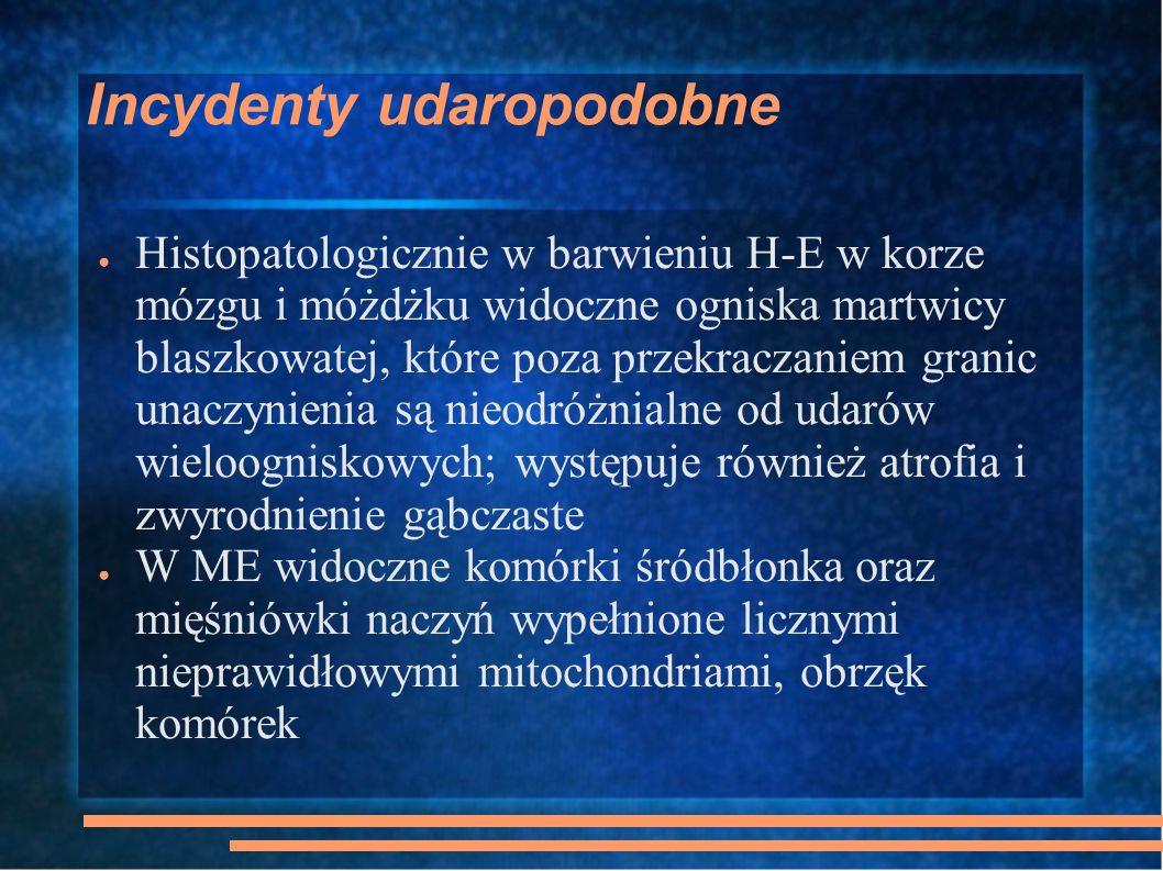 Incydenty udaropodobne Histopatologicznie w barwieniu H-E w korze mózgu i móżdżku widoczne ogniska martwicy blaszkowatej, które poza przekraczaniem gr
