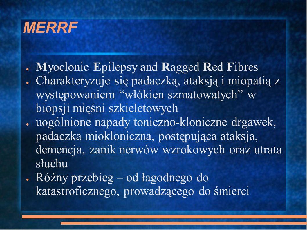 MERRF Myoclonic Epilepsy and Ragged Red Fibres Charakteryzuje się padaczką, ataksją i miopatią z występowaniem włókien szmatowatych w biopsji mięśni s