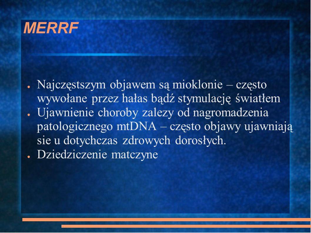 MERRF Najczęstszym objawem są mioklonie – często wywołane przez hałas bądź stymulację światłem Ujawnienie choroby zalezy od nagromadzenia patologiczne