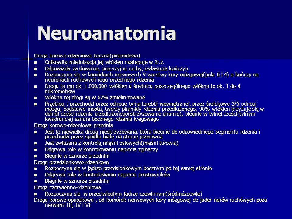 Neuroanatomia Droga korowo-rdzeniowa boczna(piramidowa) Całkowita mielinizacja jej włókien nastepuje w 2r.ż. Całkowita mielinizacja jej włókien nastep