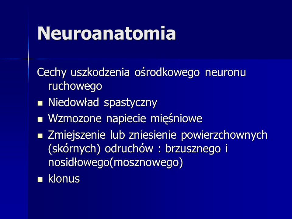 Neuroanatomia Cechy uszkodzenia ośrodkowego neuronu ruchowego Niedowład spastyczny Niedowład spastyczny Wzmozone napiecie mięśniowe Wzmozone napiecie