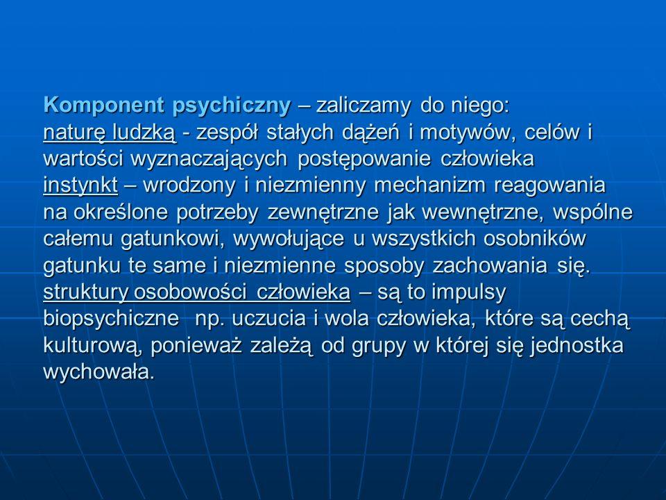 Komponent psychiczny – zaliczamy do niego: naturę ludzką - zespół stałych dążeń i motywów, celów i wartości wyznaczających postępowanie człowieka inst