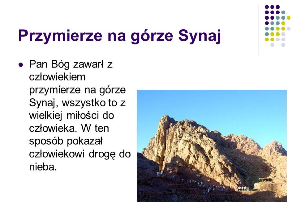 Wszystkie zdjęcia i ilustracje użyte w prezentacji pochodzą: z programu Rysunki na komputer+ galeria zdjęć, wyd.
