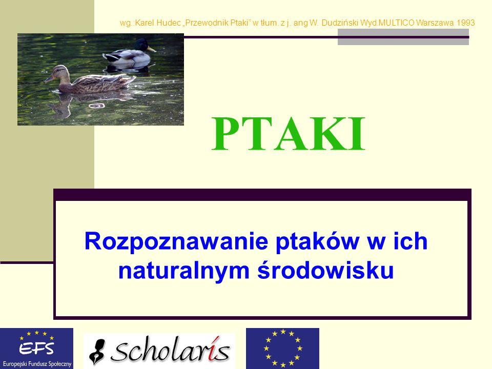 PTAKI Rozpoznawanie ptaków w ich naturalnym środowisku wg.:Karel Hudec Przewodnik Ptaki w tłum. z j. ang W. Dudziński Wyd.MULTICO Warszawa 1993