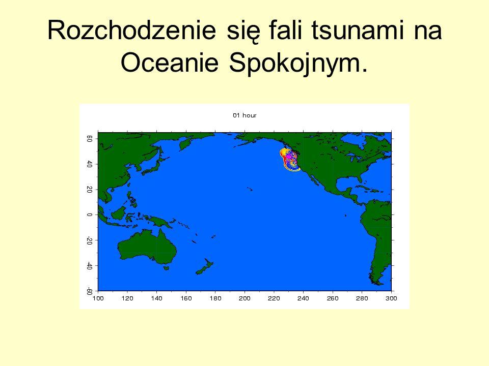 Rozchodzenie się fali tsunami na Oceanie Spokojnym.
