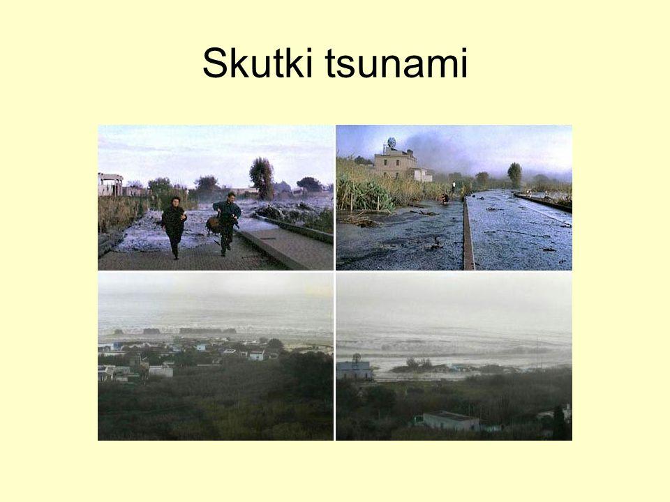 Skutki tsunami
