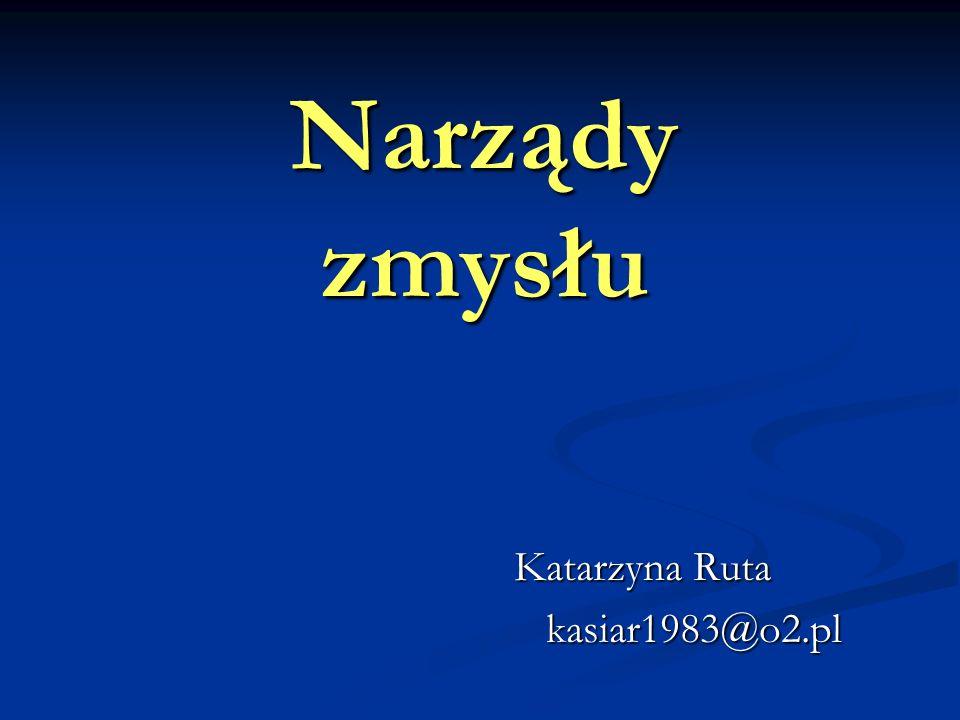 Narządy zmysłu Katarzyna Ruta kasiar1983@o2.pl