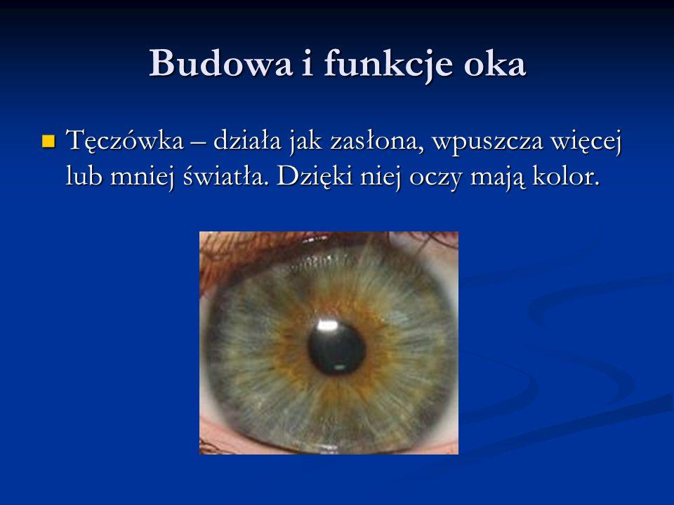 Budowa i funkcje oka Tęczówka – działa jak zasłona, wpuszcza więcej lub mniej światła. Dzięki niej oczy mają kolor. Tęczówka – działa jak zasłona, wpu