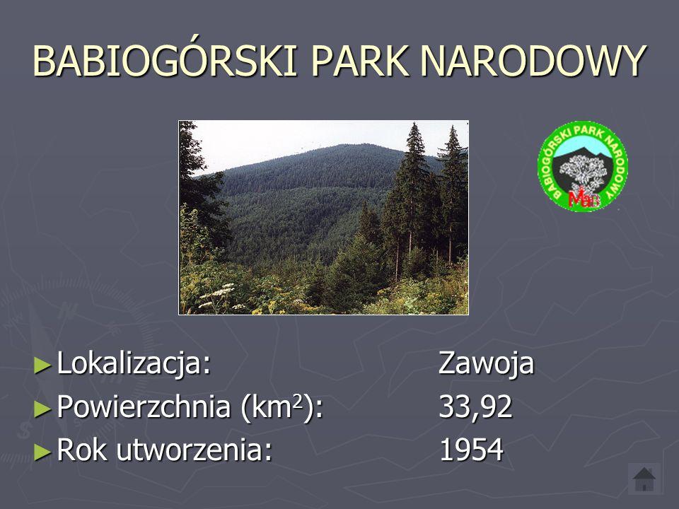 BABIOGÓRSKI PARK NARODOWY Lokalizacja:Zawoja Lokalizacja:Zawoja Powierzchnia (km 2 ):33,92 Powierzchnia (km 2 ):33,92 Rok utworzenia:1954 Rok utworzenia:1954