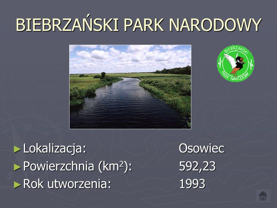 BIEBRZAŃSKI PARK NARODOWY Lokalizacja: Osowiec Lokalizacja: Osowiec Powierzchnia (km 2 ): 592,23 Powierzchnia (km 2 ): 592,23 Rok utworzenia:1993 Rok utworzenia:1993