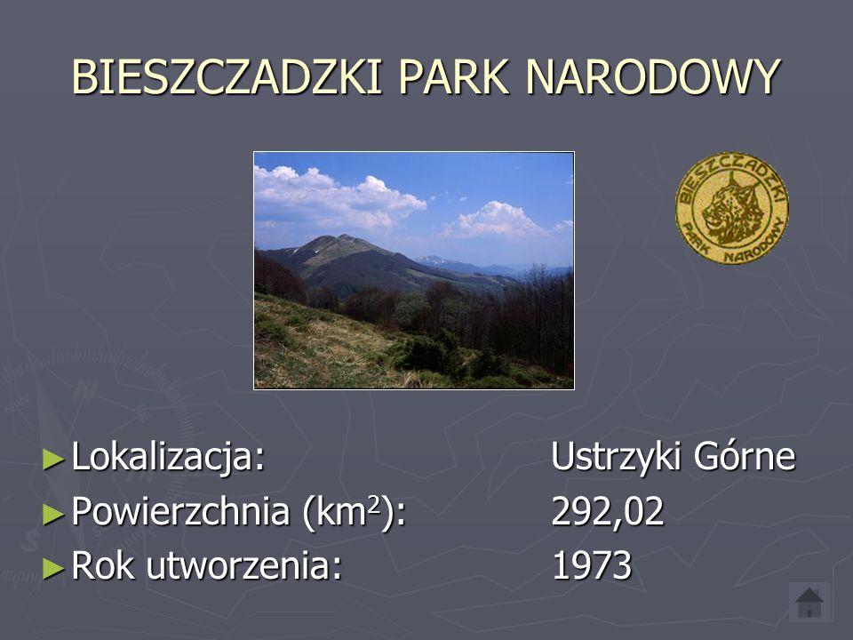 BIESZCZADZKI PARK NARODOWY Lokalizacja: Ustrzyki Górne Lokalizacja: Ustrzyki Górne Powierzchnia (km 2 ): 292,02 Powierzchnia (km 2 ): 292,02 Rok utworzenia: 1973 Rok utworzenia: 1973