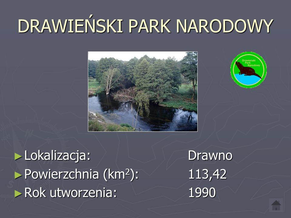 DRAWIEŃSKI PARK NARODOWY Lokalizacja: Drawno Lokalizacja: Drawno Powierzchnia (km 2 ): 113,42 Powierzchnia (km 2 ): 113,42 Rok utworzenia: 1990 Rok utworzenia: 1990
