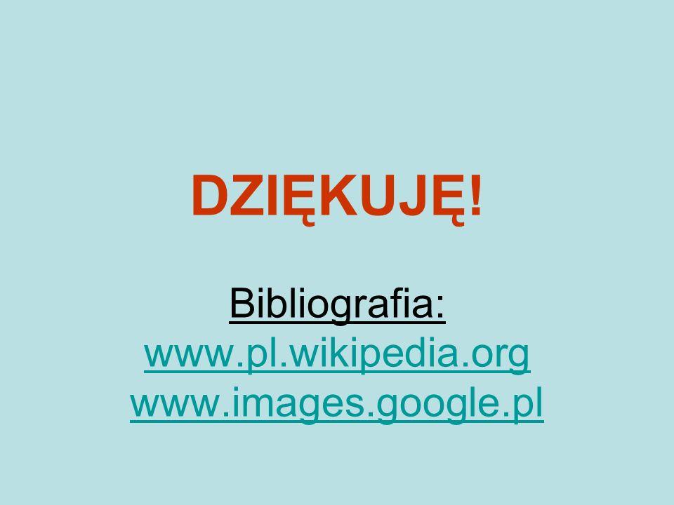 DZIĘKUJĘ! Bibliografia: www.pl.wikipedia.org www.images.google.pl www.pl.wikipedia.org www.images.google.pl