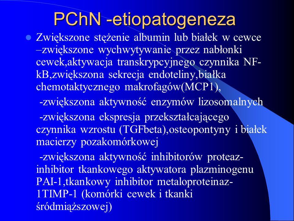 PChN -etiopatogeneza Zwiększone stężenie albumin lub białek w cewce –zwiększone wychwytywanie przez nabłonki cewek,aktywacja transkrypcyjnego czynnika