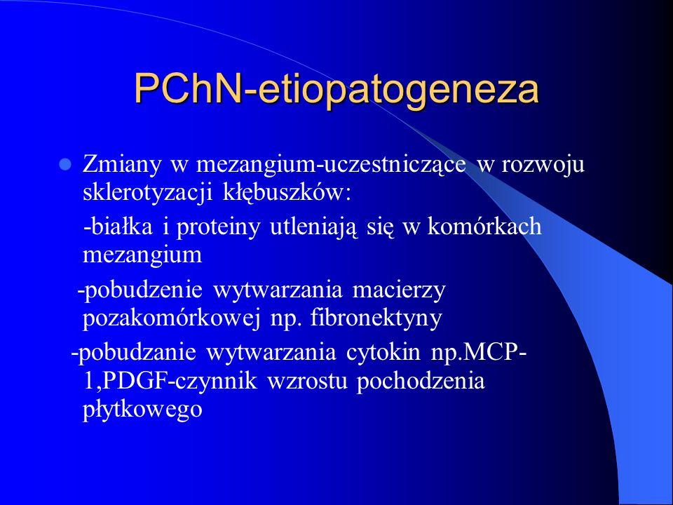 PChN-etiopatogeneza Zmiany w mezangium-uczestniczące w rozwoju sklerotyzacji kłębuszków: -białka i proteiny utleniają się w komórkach mezangium -pobud