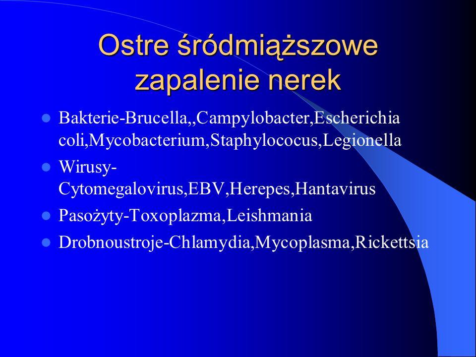 Ostre śródmiąższowe zapalenie nerek Bakterie-Brucella,,Campylobacter,Escherichia coli,Mycobacterium,Staphylococus,Legionella Wirusy- Cytomegalovirus,E