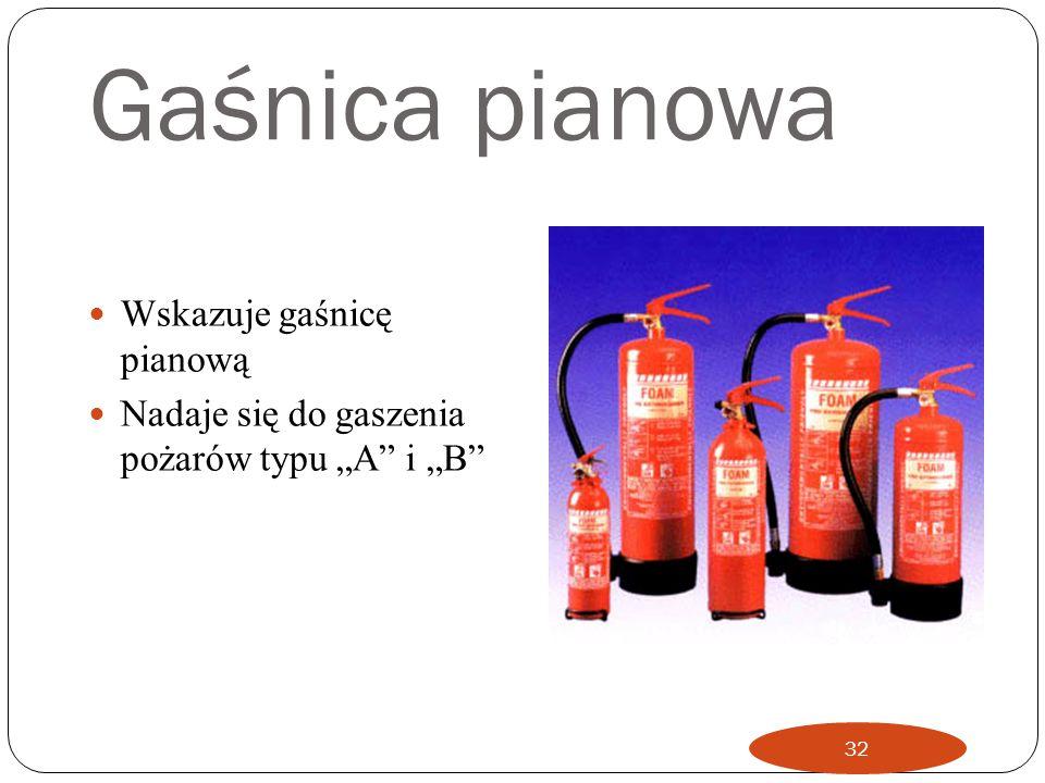 Niebieskie Wskazuje gaśnicę proszkową Nadaje się do gaszenia pożarów typu A B i C oraz pożarów urządzeń elektrycznych Gaśnica ta nie posiada efektu ch