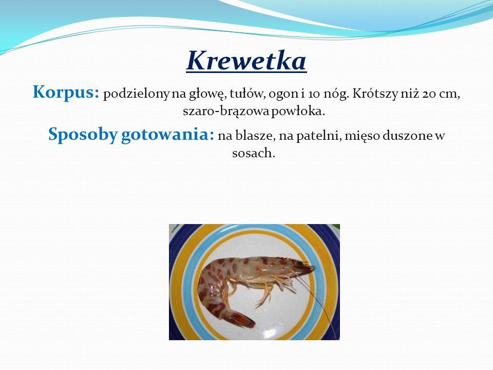 Krewetka Korpus: podzielony na głowę, tułów, ogon i 10 nóg. Krótszy niż 20 cm, szaro-brązowa powłoka. Sposoby gotowania: na blasze, na patelni, mięso