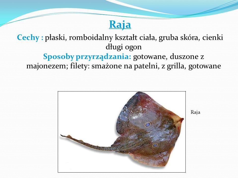 Raja Cechy : płaski, romboidalny kształt ciała, gruba skóra, cienki długi ogon Sposoby przyrządzania: gotowane, duszone z majonezem; filety: smażone n