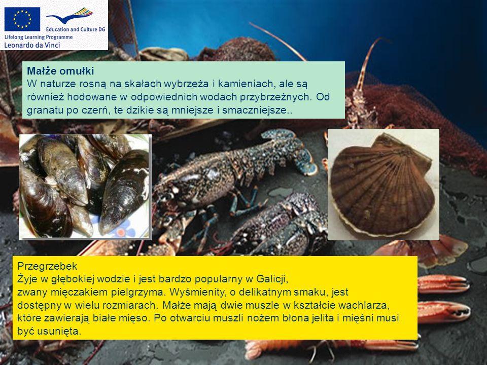 Przegrzebek Żyje w głębokiej wodzie i jest bardzo popularny w Galicji, zwany mięczakiem pielgrzyma. Wyśmienity, o delikatnym smaku, jest dostępny w wi
