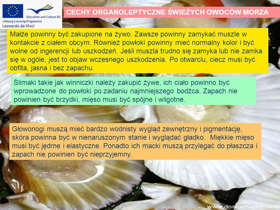 IDENTYFIKACJA I WŁAŚCIWOŚCI OWOCÓW MORZA SKORUPIAKI PĄKLA (gatunek skorupiaka) Żyją w słonej wodzie, larwy swobodnie pływają w wodzie.