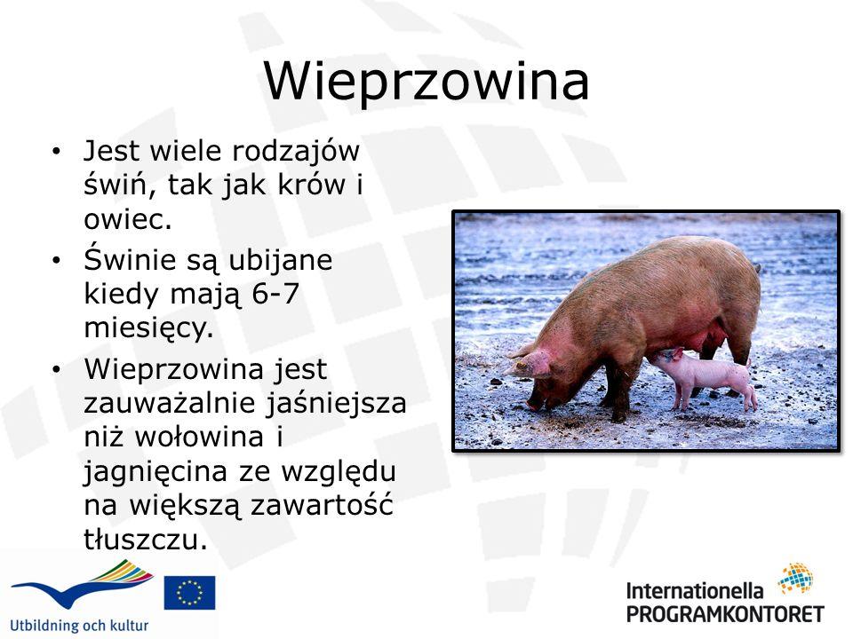 Wieprzowina Jest wiele rodzajów świń, tak jak krów i owiec. Świnie są ubijane kiedy mają 6-7 miesięcy. Wieprzowina jest zauważalnie jaśniejsza niż woł
