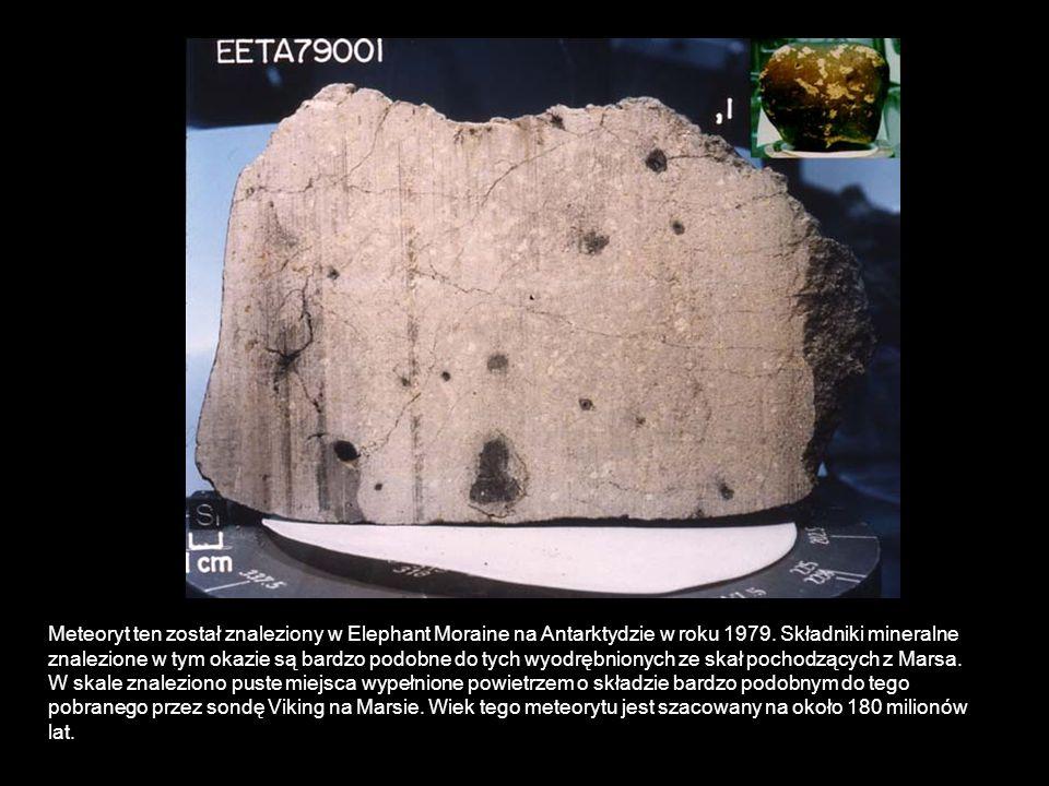 Meteoryt ten został znaleziony w Elephant Moraine na Antarktydzie w roku 1979. Składniki mineralne znalezione w tym okazie są bardzo podobne do tych w
