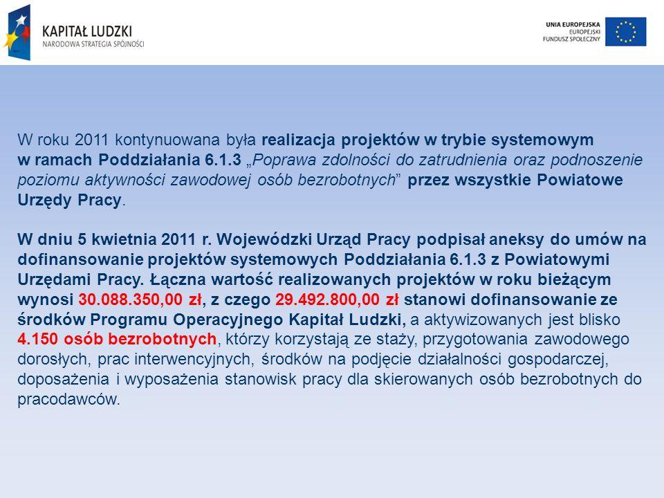 W roku 2011 kontynuowana była realizacja projektów w trybie systemowym w ramach Poddziałania 6.1.3 Poprawa zdolności do zatrudnienia oraz podnoszenie