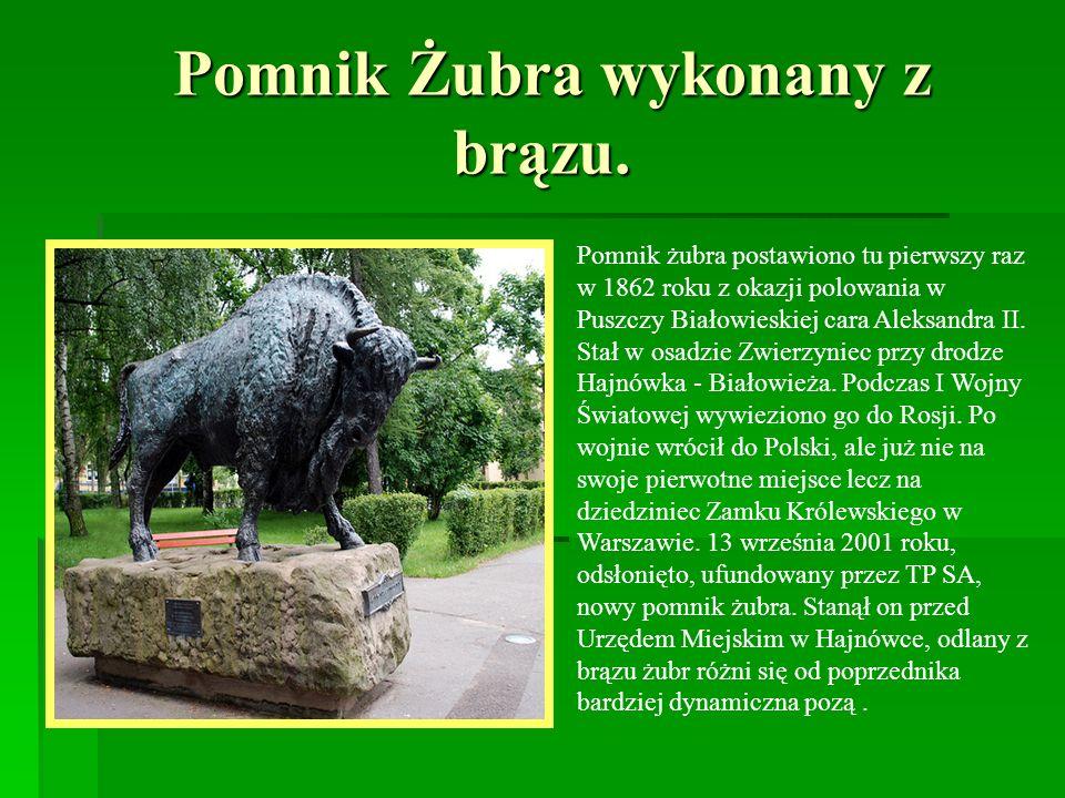 Pomnik Żubra wykonany z brązu. Pomnik Żubra wykonany z brązu. Pomnik żubra postawiono tu pierwszy raz w 1862 roku z okazji polowania w Puszczy Białowi