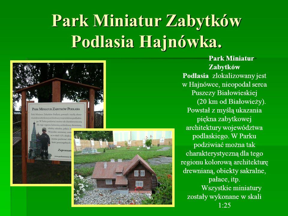 Park Miniatur Zabytków Podlasia Hajnówka. Park Miniatur Zabytków Podlasia zlokalizowany jest w Hajnówce, nieopodal serca Puszczy Białowieskiej (20 km