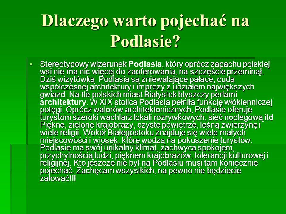 Dlaczego warto pojechać na Podlasie? Stereotypowy wizerunek, który oprócz zapachu polskiej wsi nie ma nic więcej do zaoferowania, na szczęście przemin