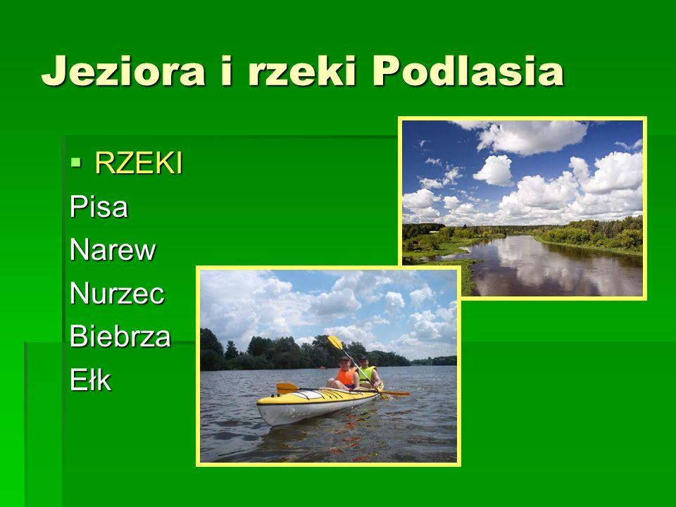 Jeziora i rzeki Podlasia RZEKI RZEKIPisaNarewNurzecBiebrzaEłk