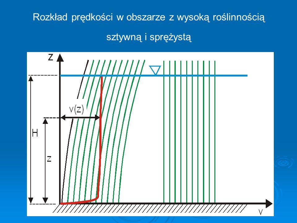 Rozkład prędkości w obszarze z wysoką roślinnością sztywną i sprężystą
