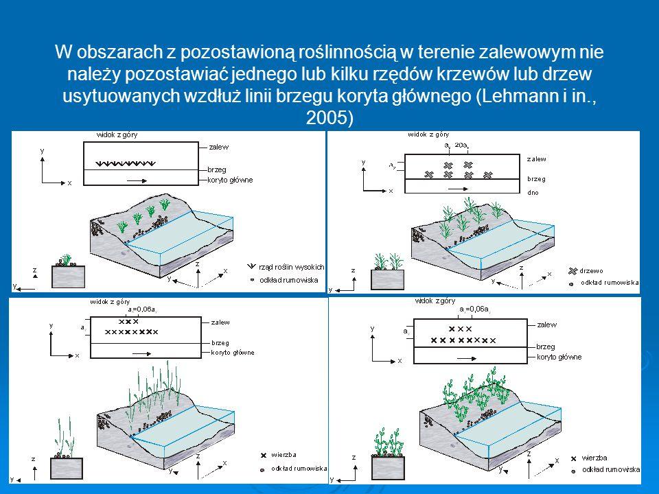 W obszarach z pozostawioną roślinnością w terenie zalewowym nie należy pozostawiać jednego lub kilku rzędów krzewów lub drzew usytuowanych wzdłuż lini
