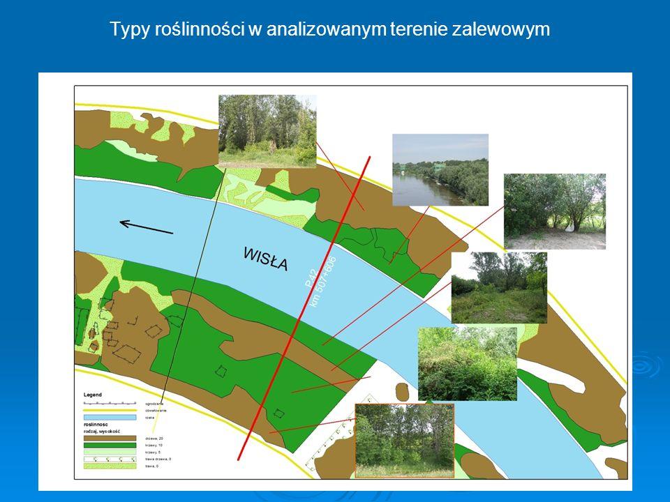 Typy roślinności w analizowanym terenie zalewowym