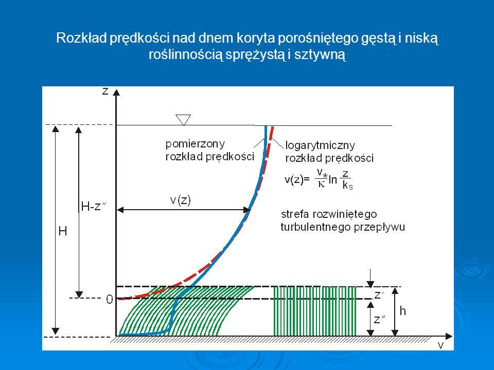Rozkład prędkości nad dnem koryta porośniętego gęstą i niską roślinnością sprężystą i sztywną