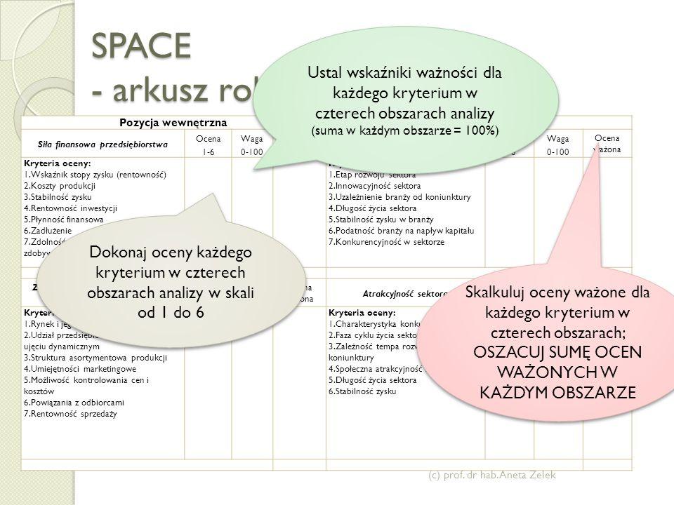 SPACE - arkusz roboczy (c) prof.dr hab.