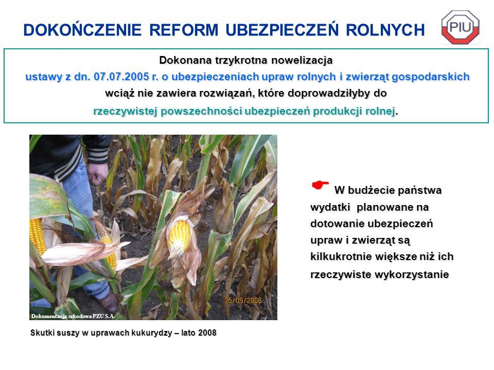 DOKOŃCZENIE REFORM UBEZPIECZEŃ ROLNYCH Dokonana trzykrotna nowelizacja ustawy z dn. 07.07.2005 r. o ubezpieczeniach upraw rolnych i zwierząt gospodars