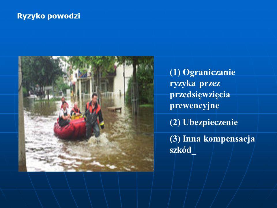 (1) Ograniczanie ryzyka przez przedsięwzięcia prewencyjne (2) Ubezpieczenie (3) Inna kompensacja szkód_ Ryzyko powodzi
