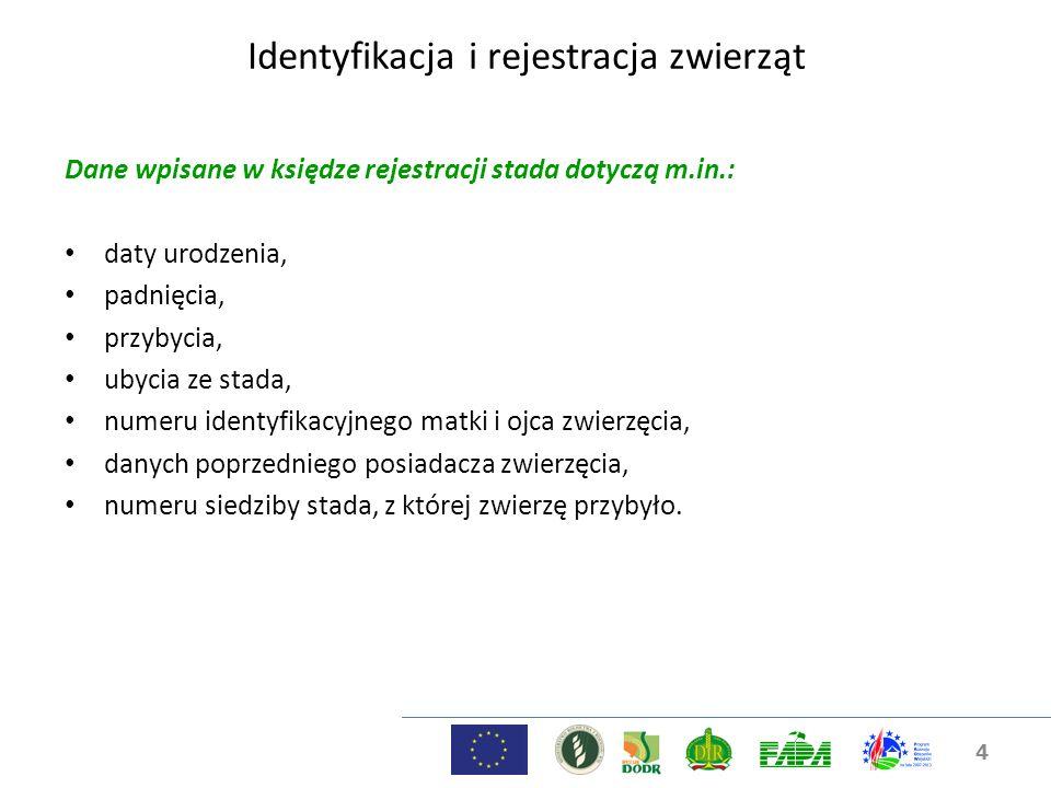 4 Dane wpisane w księdze rejestracji stada dotyczą m.in.: daty urodzenia, padnięcia, przybycia, ubycia ze stada, numeru identyfikacyjnego matki i ojca