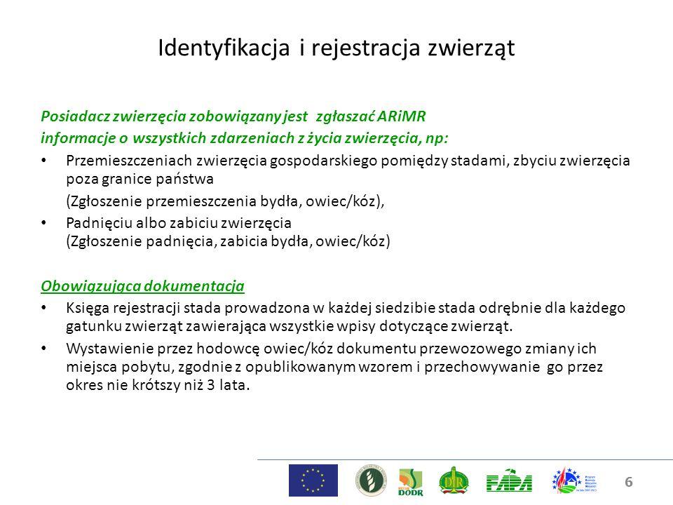 6 Identyfikacja i rejestracja zwierząt Posiadacz zwierzęcia zobowiązany jest zgłaszać ARiMR informacje o wszystkich zdarzeniach z życia zwierzęcia, np